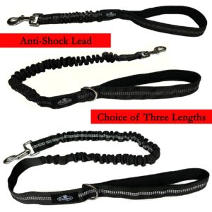 Anti-Shock Dog Lead Walk Training Bungee Pull Absorbing Extending Leash Easipet