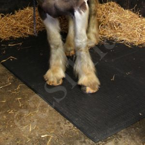 Interlocking 24mm EVA 1m x 1m Stable Horse Pig Dairy Pet Floor Mats Matting 575